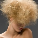 Image of extremely frizzy, damaged looking hair